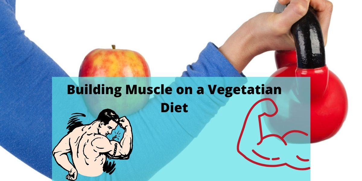Building Muscle on a Vegetarian diet